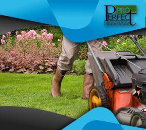 تنظيف-الحدائق